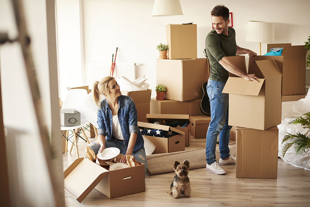 How to Move with Pets - MGR Real Estate